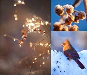Winter Snow Poem